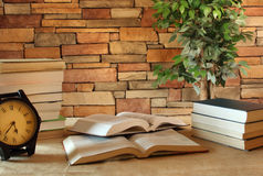 Книги в комнате исследования Стоковое Изображение