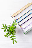 Книги и зеленая хризантема на белой деревянной предпосылке Взгляд сверху, открытый космос Стоковое фото RF