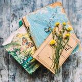 Книги и одуванчики стоковое фото