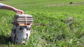 Книги на напряжении в луге на сельской местности акции видеоматериалы