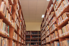 Книги на полке в библиотеке стоковое фото rf