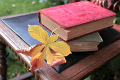 2 книги на стуле Стоковые Фото