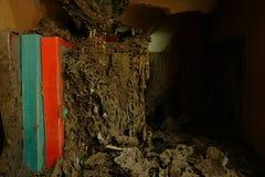 Книги разрушены термитами стоковое изображение