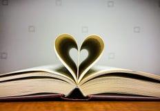 Книги чтения влюбленности Стоковая Фотография RF