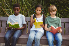 Книги чтения детей на парке Стоковое Фото