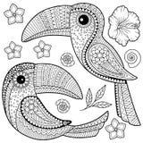 Книжка-раскраска для взрослых Toucan среди тропических листьев и цветков иллюстрация вектора