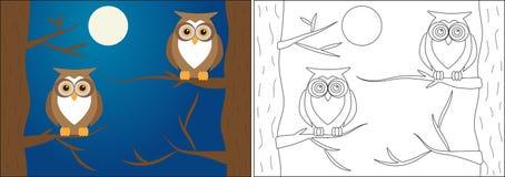 Книжка-раскраска для детей Сычи на ветвях деревьев вечером иллюстрация вектора