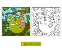 Книжка-раскраска, червь в яблоке Стоковое фото RF