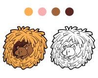 Книжка-раскраска для детей: животное хомяка Стоковое фото RF