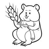 Книжка-раскраска для детей: хомяк (животное) Стоковые Фотографии RF