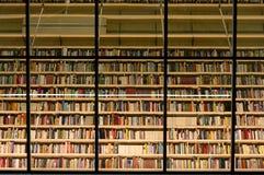 Книжные полки библиотеки заполненные с книгами Стоковая Фотография