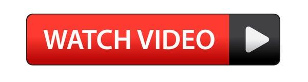 Кнопка видео вахты