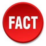 кнопка факта иллюстрация штока