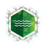 Кнопка шестиугольника зеленого цвета картины заводов значка волн моря флористическая бесплатная иллюстрация