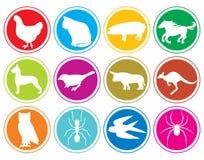 Кнопки икон животных Стоковое Изображение