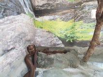 кобра Стоковые Фотографии RF