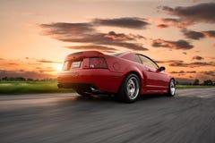 Кобра Ford Мustang Стоковые Изображения