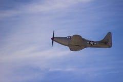 Кобра P-39 Стоковое Фото