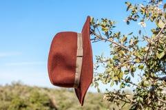 Ковбойская шляпа повешенная на ветви в лесе стоковая фотография rf