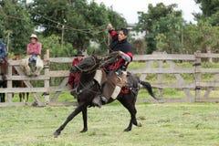 Ковбой в верховой лошади Анд Стоковое Изображение RF