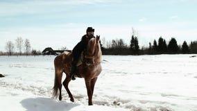 Ковбой девушки сидя на лошади Стоковые Фото