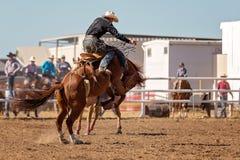 Ковбой ехать лошадь Bronc a Bucking на родео страны Стоковые Фото
