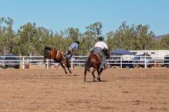 Ковбой ехать лошадь Bronc a Bucking на родео страны Стоковые Изображения