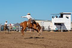 Ковбой ехать лошадь Bronc a Bucking на родео страны Стоковое Фото