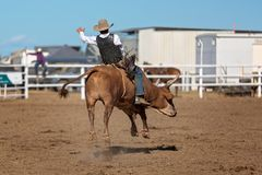 Ковбой ехать Bull на родео страны Стоковые Фотографии RF
