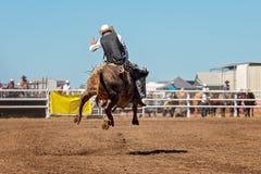 Ковбой ехать Bull на родео страны Стоковое фото RF