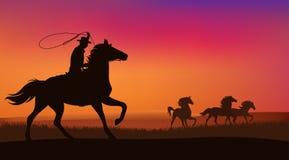 Ковбой и лошади иллюстрация вектора