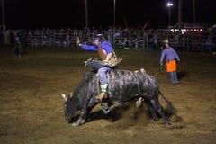 Ковбой катания Bull Стоковое Изображение