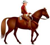 Ковбой на лошади иллюстрация штока