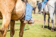 Ковбой на лошади Стоковые Фото