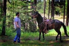 Ковбой тренируя славную лошадь Стоковые Фотографии RF