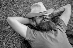 Ковбой человека бородатый кладет на траву ослабляя или имея ворсину Ковбой ослабляя на зеленом луге Зверский ковбой с зеленым цве стоковая фотография rf