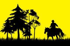 ковбой Стоковая Фотография RF