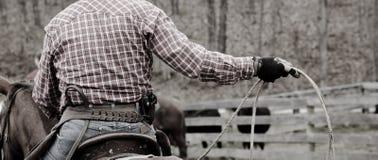 ковбой стоковое изображение
