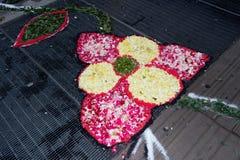 Ковер лепестка и цветка для торжества christi domini сборника Стоковое Изображение