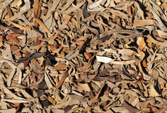 Ковер кожаных прокладок Стоковое Фото