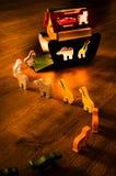 Ковчег Noah на ноче Стоковые Фото
