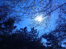 Когда вы смотрите на солнце, you' ll находит свой свет стоковые фотографии rf