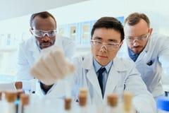 Когорта ученых в защитных eyeglasses работая совместно в химической лаборатории Стоковая Фотография RF