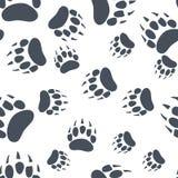 Коготь медведя Картина следа ноги медведя безшовная вектор иллюстрация штока