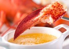 Коготь омара с расплавленным маслом стоковая фотография