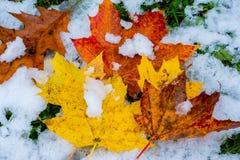 Когда падение и зима вступают в противоречия стоковое изображение