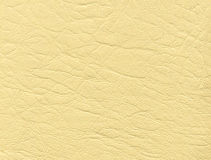 кожаная белизна Стоковое фото RF