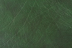 кожаная естественная текстура Стоковая Фотография
