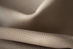 кожаная кожа Стоковая Фотография RF