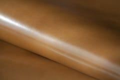 кожаная кожа Стоковое Изображение